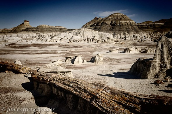 Petrified-Log-Bisti-Wilderness