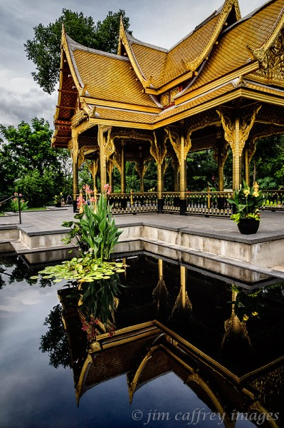 Thai-Reflection
