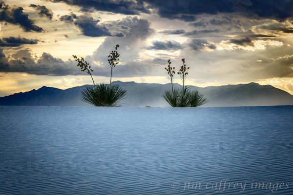 White-Sands-Blue-Hour